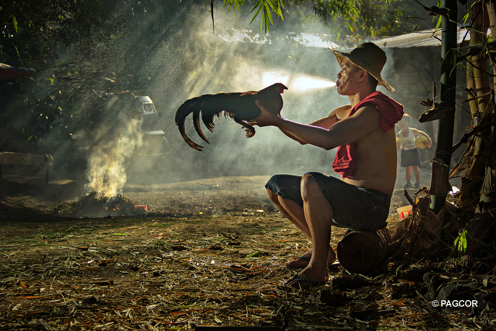 3rd PAGCOR National Photography Competition